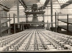 Loom and Creel, Shaw Lodge Mills, Halifax, 1920