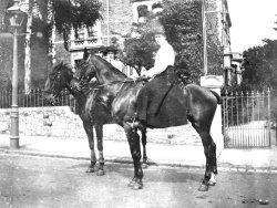 An Equestrian Holiday, Upper Belgrave Road, c1910