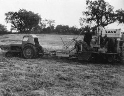 The 'Lanz' PTO Harvester at Bellinter, 1956