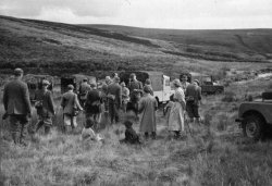 Shooting Party on Conistone Moor Aug 29, 1956