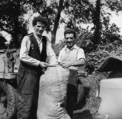 'Pa' and 'Ronnie' packing Mint, 1959