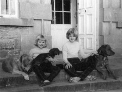 Girls and Dogs at Bellinter, 1960
