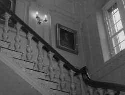 Staircase at Bellinter, 1960