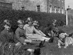 Holdsworth children at Bellinter, 1960