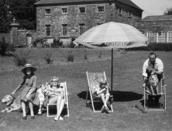 A Summer day at Bellinter, 1960