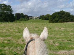 A view from the saddle at Buckland House, Devon