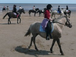 Beach Ride at Mablethorpe, 2009